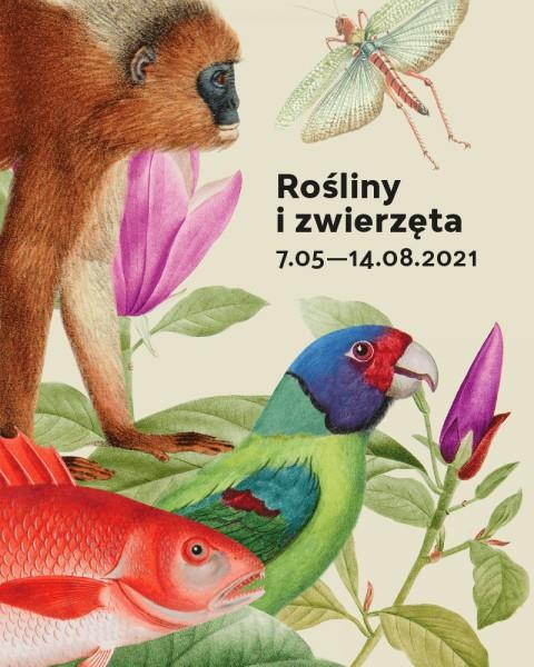 Rośliny i zwierzęta, Linneusz, encyklopedia, ilustracje, Niezła Sztuka