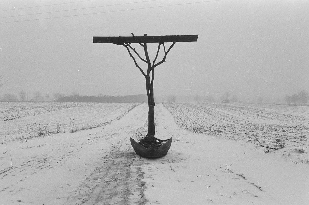 Thanatos polski, K.M. Bednarski, MOCAK, wystawa, niezła sztuka