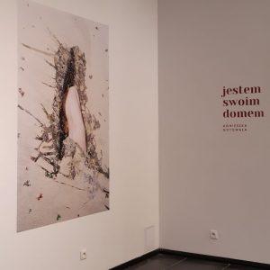 Galeria Imaginarium, ŁDK, Łódzki Dom Kultury, niezła sztuka